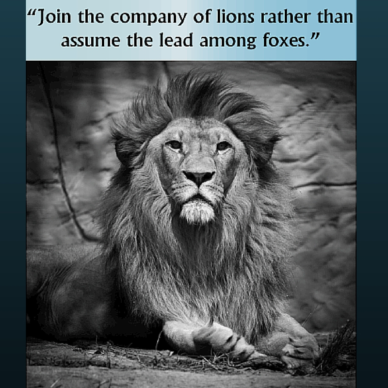Join the Company of Lions!